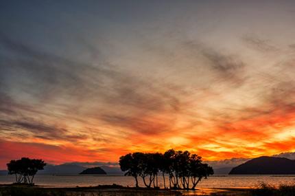 水鳥の楽園・琵琶湖