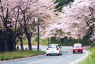 琵琶湖ビューポイントドライブ