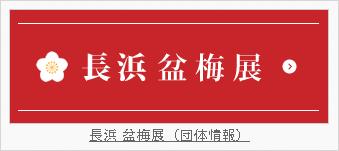 長浜盆梅展(団体情報)