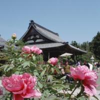 総持寺のボタン