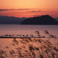 竹生島夕景