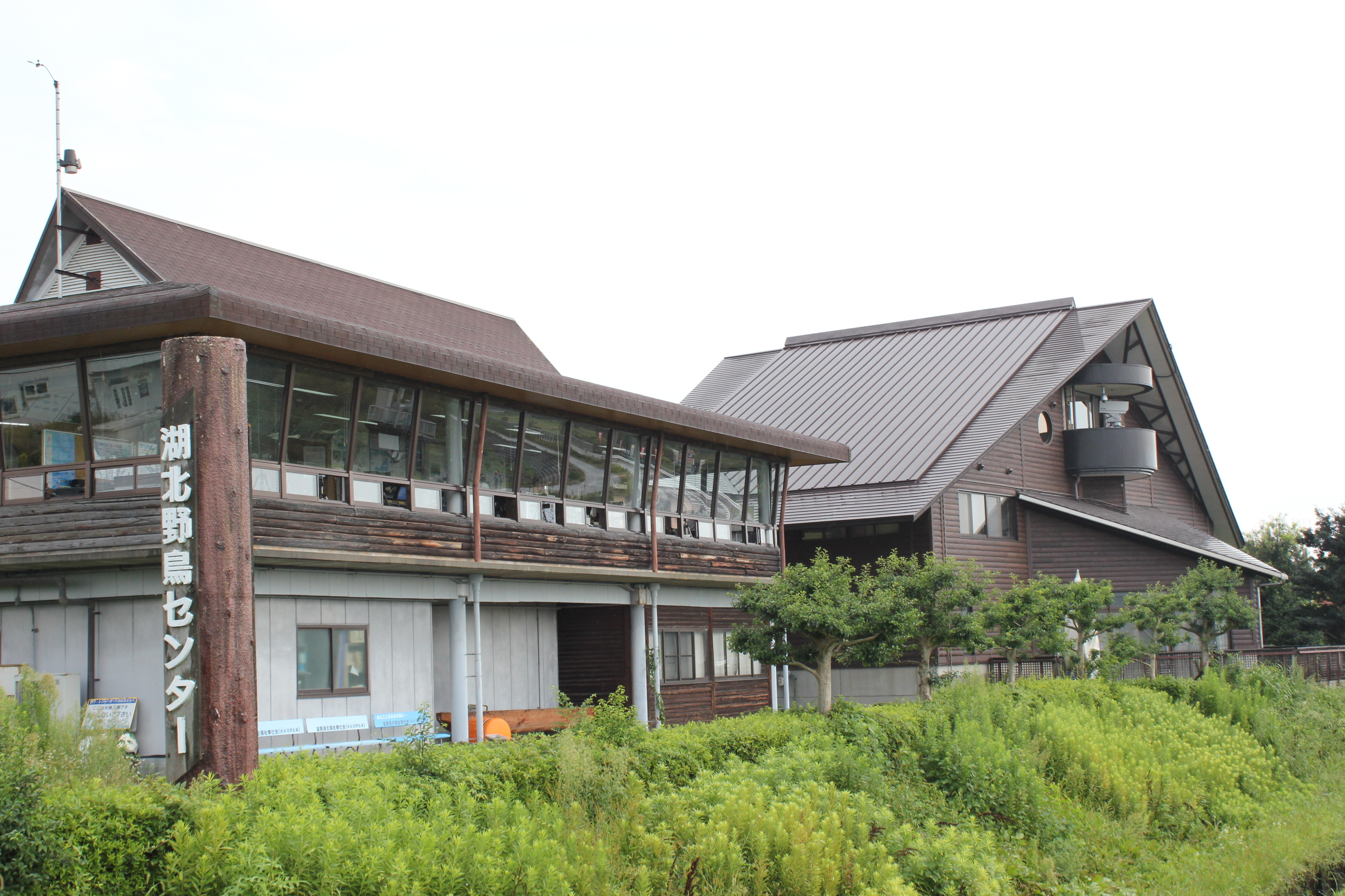 Kohoku Wild-Bird Center / Biwako Waterfowl & Wetland Center