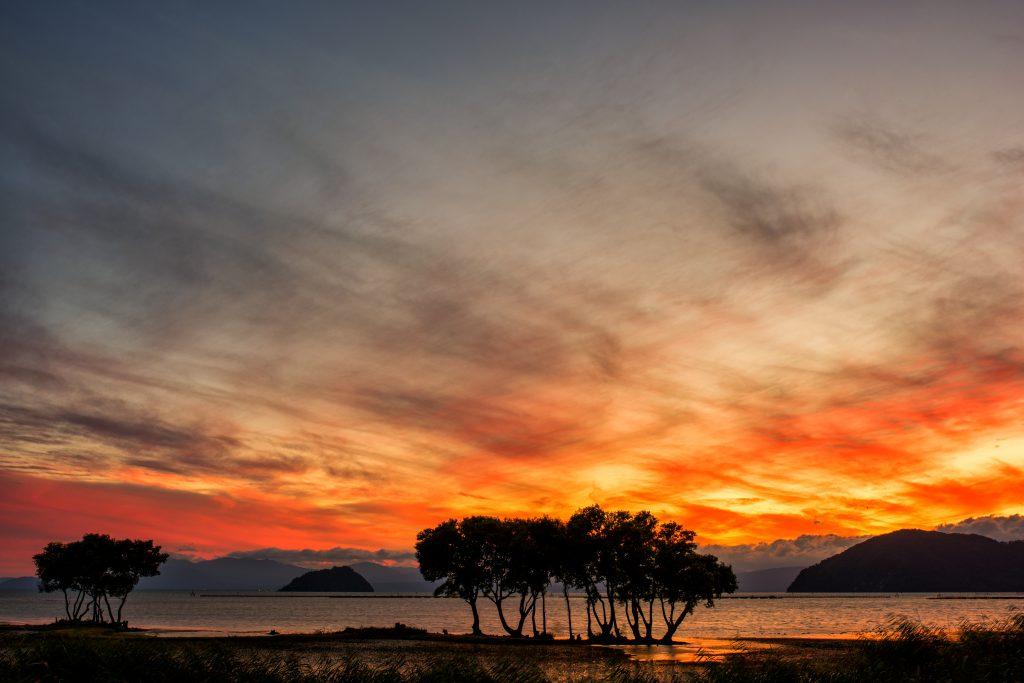 비와코(琵琶湖)의 절경 관광장소(호안(湖岸)도로·호코엔(豊公園)공원·미즈도리공원(水鳥公園)