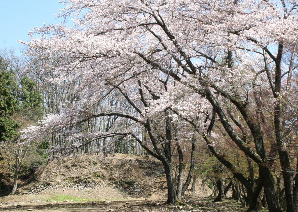 Site of Odani Castle